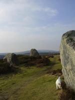 Stone circle west by cornishmouse