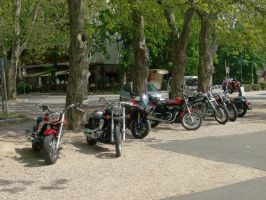 Harley meeting by Mate397