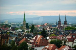 View on Freiburg by Dinozzaver