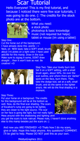 SCAR. TUTORIAL. 2011. by MiddysGraphics