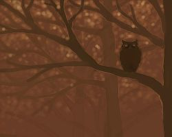 Owl - day by sc189