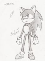 done sonic by speckledmindphoenix