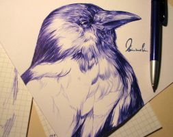 Ballpoint Pen Black Crow - WIP by kleinmeli