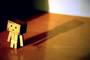 Lonely Danbo by kurosakii
