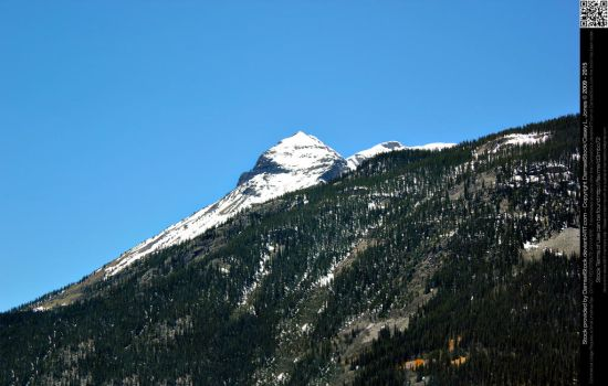 Snowcapped and Evergreen Covered Mountains by DamselStock