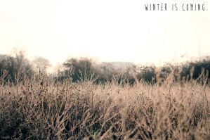 Winter is coming. by Tooga