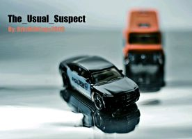The_Usual_Suspect by BrknRib