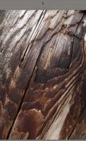 Texture - Wood - 0061 by resurgere