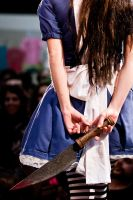American McGee's Alice by daguerreoty-pe
