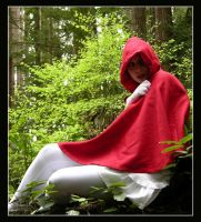 .red riding hood II by Cardboard-Cutout