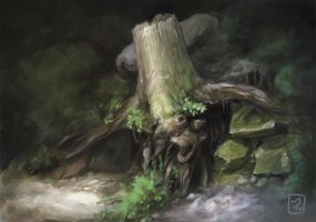 Stump by Rechka