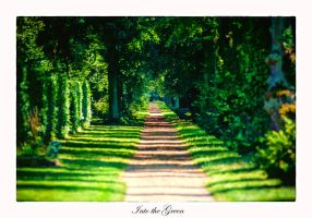 Into the green by calimer00