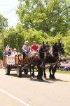 Draft Horses and Wagon I by Stock-Wulf