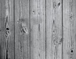 Wood Texture II by elemis