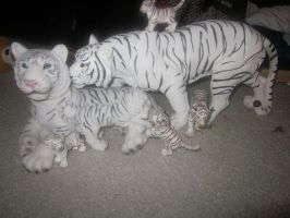 White Tigers.... Two by Leioll