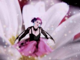 Where Fairy's Come From by jellybean2009
