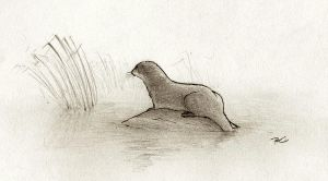 RIP River Otter by RobtheDoodler