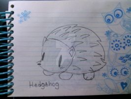 Hedgehog by BjtheHedgie3
