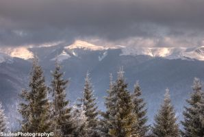 Winter Landscape HDR by SauleaPhotography