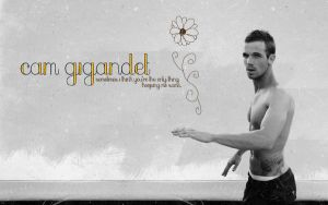 Cam Gigandet Wallpaper by bloodylev