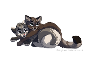 WhiteXSky kittens by DancingfoxesLF