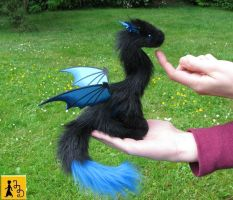 Little Pet Dragon black and blue by Jerseydays