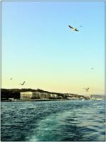 A Sea View by GirlinTranslation