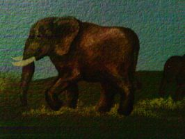 Wall Painting: elephant by HeatherBea