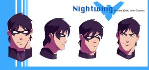 Nightwing YJ by Intimidator777