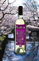 Wine Bottle with Label by cosplay-kitty