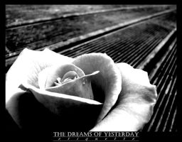 The Dreams of Yesterday. by Etiquette