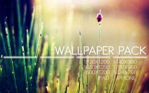 Never Look Back WP Pack by solefield