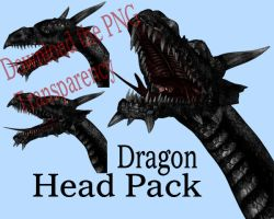 Dragon Head Pack by markopolio-stock