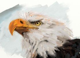 Mouse Paintings - Eagle by ifke