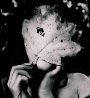 Leafmask by Dream-traveler