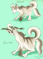 Collie Pokemon Redux by FoxOFWar