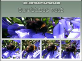 Bumblebee Pack 1 by shelldevil