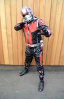 Ant Man Cosplay (1) by masimage