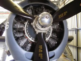 Radial Engine Goodness by Jetster1