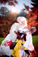 Sesshomaru 1 by Lunomar