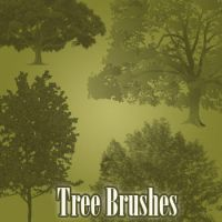 Tree Brushes by remygraphics