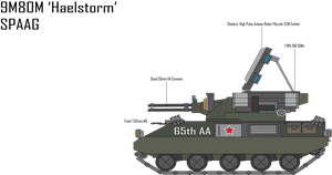 IRS 9M80AM 'Haelstorm' SPAAG by Target21