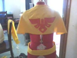 Cawlin Cosplay: The Cape (Behind) by InvaderSonicMx