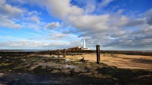 St Marys Lighthouse by roodpa