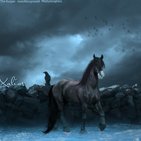 X A L I A S . One by MiddysGraphics
