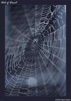 Web of Deceit by eagle79