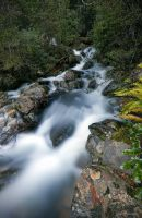 Little Fisher Creek, Tasmania by LukeThomson