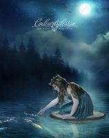 FAIRY'S RIVER by codeartworks