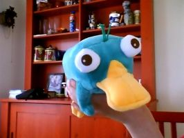 Perrry the Platypus Plushie by LucarioPlatypus