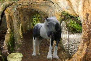 Horse Behind The Waterfall by 14658